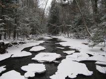 Fleuve de l'hiver Photographie stock