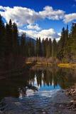 Fleuve de Miette Photo libre de droits