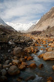 Fleuve de montagne Images libres de droits