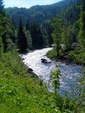 Fleuve de montagne Images stock
