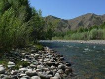 fleuve de montagne Photos stock