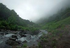 Fleuve de montagne Photo libre de droits