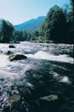 Fleuve de montagne avec de l'eau propre. Image libre de droits
