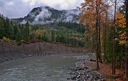 Fleuve de montagne dans l'automne - Pilchuck, WA photo libre de droits