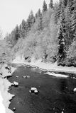 Fleuve de montagne de l'hiver dans Carpathiens Image libre de droits