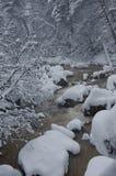 Fleuve de montagne en hiver Image libre de droits