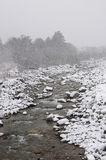 Fleuve de montagne en hiver Image stock
