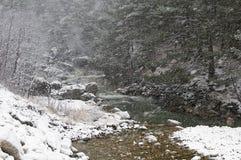 Fleuve de montagne en hiver Images stock