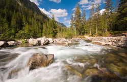 Fleuve de montagne en montagnes de Tatr Photographie stock libre de droits