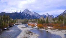 Fleuve de montagne rocheuse Photo stock