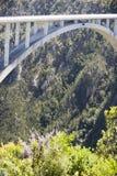 fleuve de passerelle de bloukrans Images stock