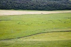 fleuve de prairie Photo libre de droits