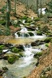 fleuve de rapid de montagne Photographie stock libre de droits
