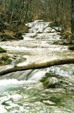 fleuve de rapid de montagne Images stock
