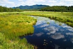 Fleuve de Saranac menant aux montagnes Photo libre de droits