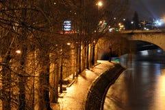Fleuve de Seine à Paris Photographie stock libre de droits
