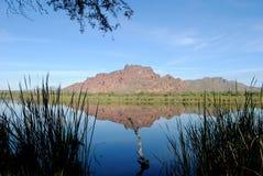 Fleuve de sel, Arizona Photographie stock libre de droits