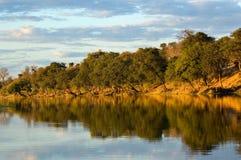 Fleuve du Botswana Images libres de droits
