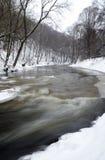 Fleuve en hiver Image libre de droits