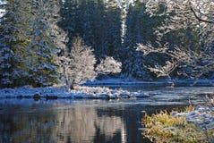 Fleuve en Suède, l'hiver Photographie stock