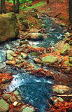 Fleuve en vallée de Marului Image libre de droits