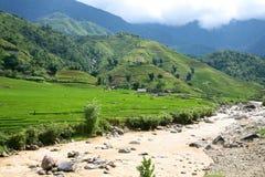 Fleuve et côtes dans Sapa, Vietnam Image libre de droits