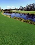 Fleuve et terrain de golf photographie stock libre de droits