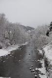 Fleuve froid Photos libres de droits