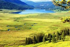 Fleuve incurvé sur le pré et le lac de montagne Photos stock
