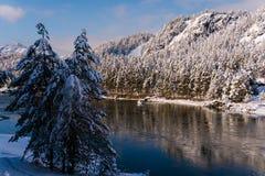 Fleuve Katun, Altai, Russie de montagne Un hiver scénique Photos stock