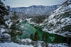 Fleuve Katun, Altai, Russie de montagne Un hiver scénique Photographie stock libre de droits