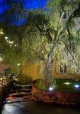 Fleuve la nuit Photo libre de droits