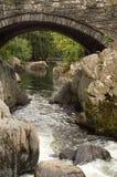 Fleuve Llugwy, Betws-y-Coed Images libres de droits