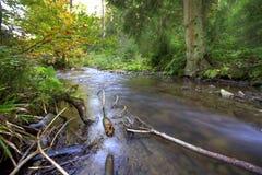 Fleuve montagneux photos libres de droits