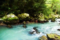 Fleuve montagneux Photographie stock libre de droits