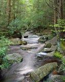 Fleuve-Ouest la Virginie de Blackwater Image libre de droits