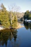 fleuve placide Images stock