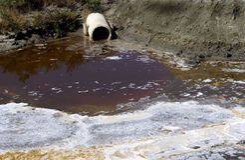 fleuve pollué Photos libres de droits