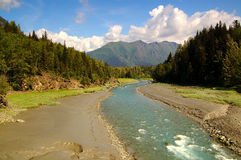 Fleuve, pré, tres et moutains, Alaska Photo stock