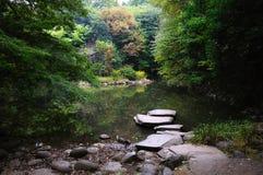 Fleuve profondément dans la forêt de montagne. Image libre de droits
