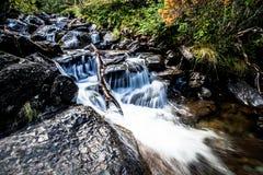 Fleuve profondément dans la forêt de montagne photographie stock libre de droits