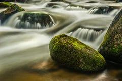 Fleuve profondément dans la forêt de montagne image libre de droits