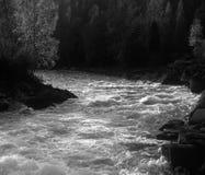 Fleuve rapide Photo libre de droits