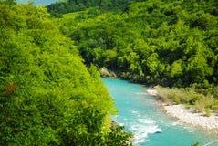 Fleuve rapide de montagne Images libres de droits