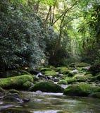 Fleuve rural avec les roches moussues Image libre de droits