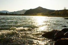 fleuve Russie Sibérie de région de katun d'altai Photographie stock libre de droits