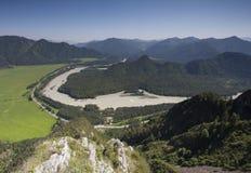 fleuve Russie Sibérie de région de katun d'altai images libres de droits