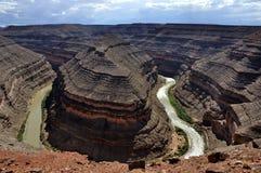 fleuve san de juan de cols de cygne Photographie stock