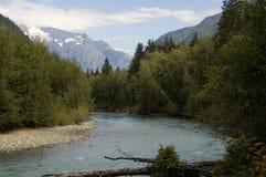 Fleuve saumoné canadien Image libre de droits