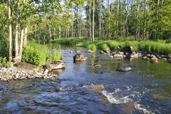Fleuve saumoné sauvage en Suède Photos libres de droits